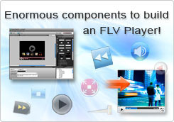 Enormous components to build an FLV Player!