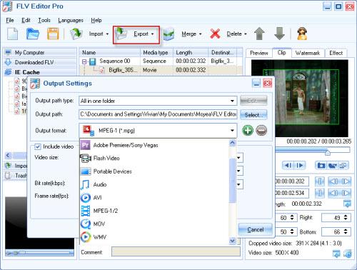 convert flv windows movie maker