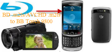 M2TS file to BlackBerry Torch for playing